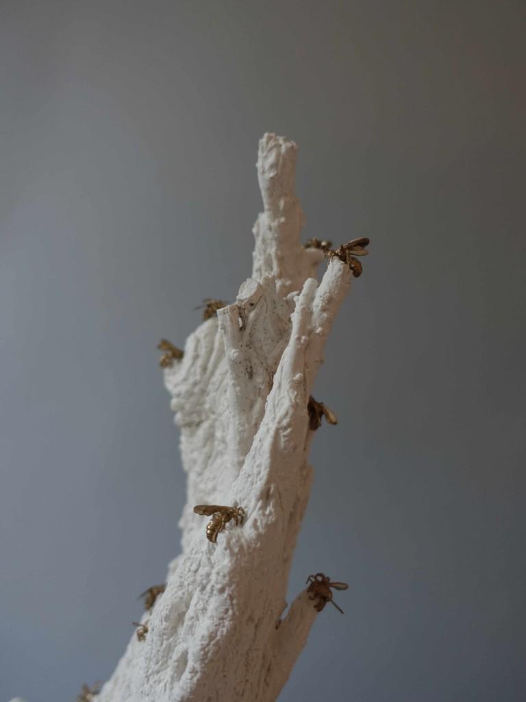 stumpydetailtoplores